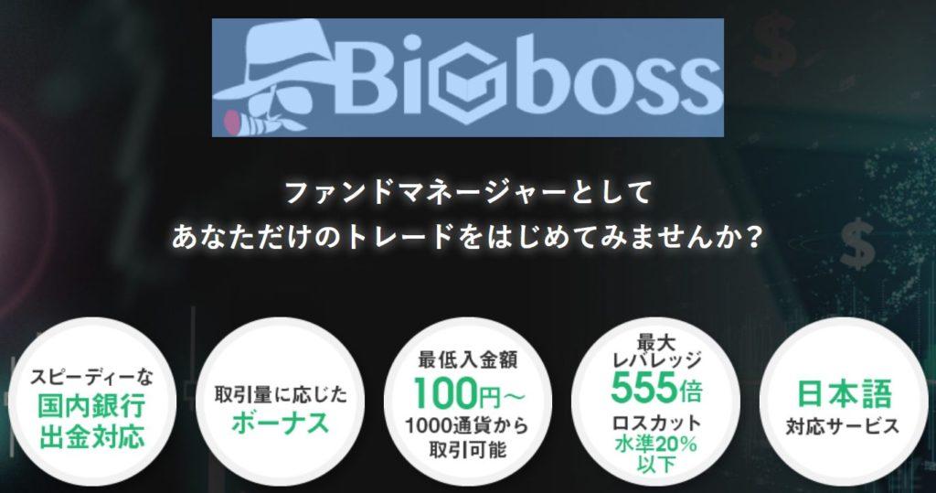 BigBoss 特徴